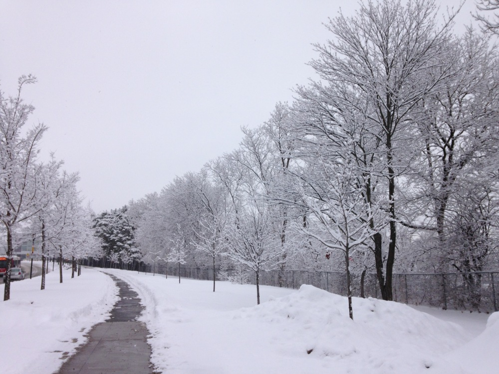 TakingCareofMe.Snow