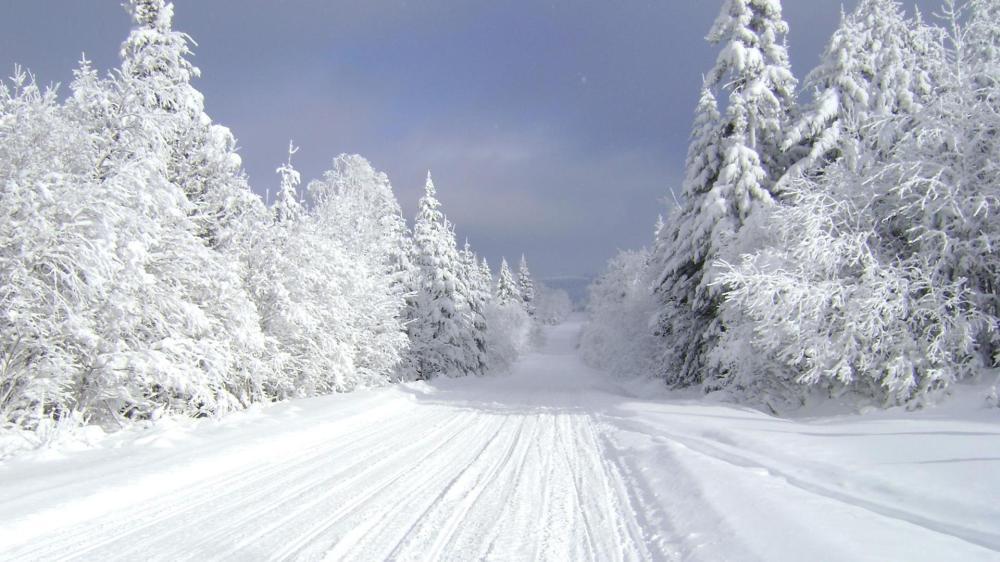 snowmobiletrail